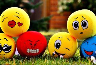 Qu'est ce que le management émotionnel ?
