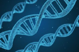 Les biotechnologies, moteur de l'innovation technologique