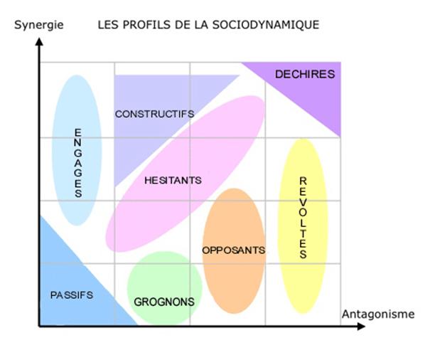 L'élan sociodynamique, de Jean-Christian Fauvet (Editions d'organisation)